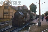 CFR Romania Railways Narrow Steam Loco Sibiu 1968 a.JPG